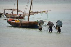 Fishermen carrying nets, Zanzibar Stock Photography