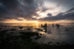 Fishermen catch fish at dawn Stock Photography