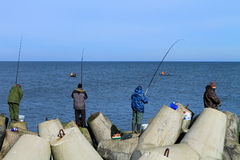 Fishermen catch a sprat in the Baltic Sea Stock Photo