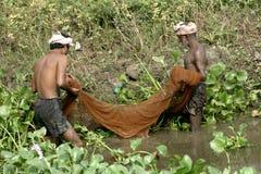 Fishermen catching fish with net Royalty Free Stock Photo