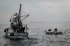 Fishermen Of Cinarcik Town. Of the country Turkey. Yalova city located in Marmara region of the country Turkey. Used to be a small town and hit by the great Stock Images