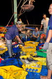 Fishermen are collecting and sorting fisheries after a long day fishing in the Hon Ro seaport, Nha Trang city Royalty Free Stock Photos
