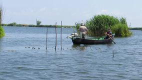 Fishermen in the Danube delta stock video footage