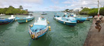 Fishermen dock in Puerto Ayora, Santa Cruz Stock Images