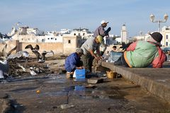 Fishermen at the Essaouira fortified city Royalty Free Stock Image