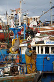 Fishermen in Essaouria, Morocco Royalty Free Stock Images