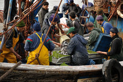 Fishermen in Essaouria, Morocco Royalty Free Stock Image