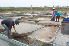 Fishermen and fish farm in river Stock Photo