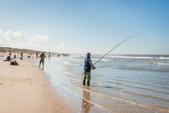 Fishermen fishing as far as the eye reaches during the Sea Fishing competition along the Northsea shore royalty free stock photo