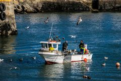 Fishermen fishing in Galician royalty free stock images