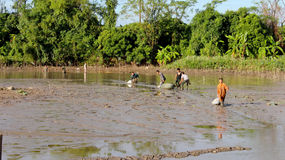 Fishermen fishing in the lagoon Royalty Free Stock Photography