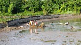 Fishermen fishing in the lagoon Royalty Free Stock Image