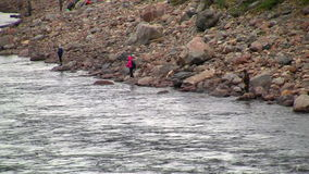 Fishermen fishing in river stock video footage