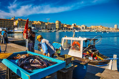 Fishermen and fresh catch Royalty Free Stock Photography