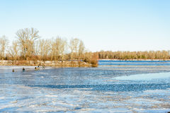 Fishermen on the Frozen River Royalty Free Stock Image