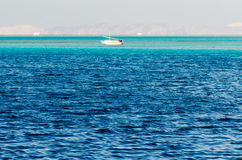 Fishermen go to the Red Sea to fish Royalty Free Stock Photos