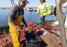 Fishermen in the harbor Stock Photography