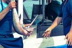 Fishermen holding swordfish Stock Photos