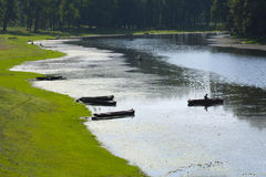 Fishermen ifishing on the pond Royalty Free Stock Photography