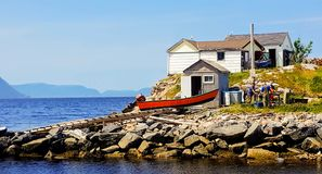 Fishermen in Irishtown NL. Preparing their catch at the end of their trip royalty free stock photography