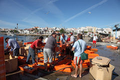 Fishermen in Lagos, Portugal Stock Photos