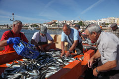 Fishermen in Lagos, Portugal Royalty Free Stock Images