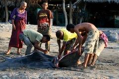 Fishermen,Lamalera. Fishermen cut 200 kilogram manta ray. The village of Lamalera on the Indonesian island of Lembata is the last place on earth where whales royalty free stock photos