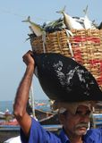 Fishermen, Marari Beach, Kerala India Royalty Free Stock Photography