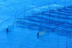 Fishermen near the seaweed farm Stock Image