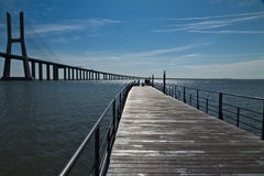 Fishermen near the Vasco da Gama bridge, Lisbon Stock Photos