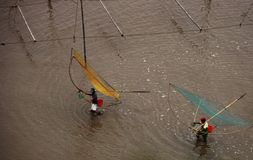 Fishermen with nets Stock Image