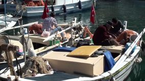 Fishermen netting at harbour stock video footage