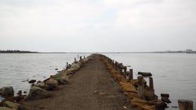 Fishermen pier on lake stock video