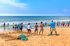 Fishermen pull a trawl with a catch on the beach on a sunny day. Colombo, Sri Lanka - January 14, 2018. Fishermen pull a trawl with a catch on the beach on a stock images