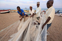 Fishermen pulling a fishing net Royalty Free Stock Image