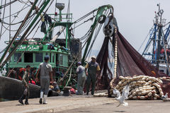 Fishermen return with their catch to the busy harbour at Essaouira in Morocco. Stock Photo