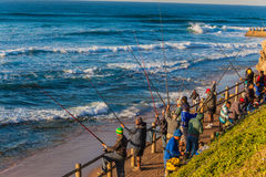 Fishermen Rods Excitement Sea Stock Images