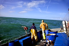 Fishermen in rough sea. Two Guernsey fishermen in a rough sea fishing for blonde ray Stock Image
