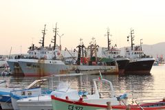 Fishermen`s fleet in Sozopol`s harbor Royalty Free Stock Photo