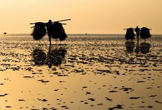 Fishermen at sea beach. Fishermen returning from sea with their fishing nets Stock Photo