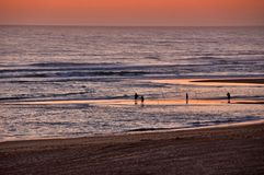 Fishermen by the sea at sunset Royalty Free Stock Photos
