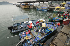 Fishermen Selling Seafood Near Shore stock images