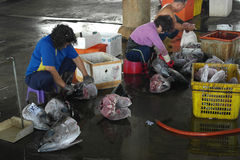 Fishermen slaughter the tuna fish in Donggang, Taiwan Stock Images