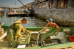 Fishermen sort the catch on boat Royalty Free Stock Photos