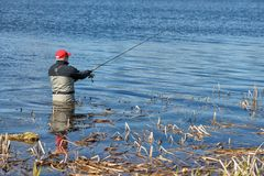 Fishermen spin fishing. Using chest waders to stay dry Stock Images