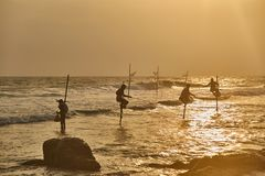 Fishermen in Sri Lanka fishing at sunset stock photography