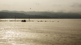 Fishermen take fish from nets Royalty Free Stock Photography
