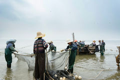 Fishermen team working Royalty Free Stock Photography