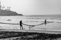 Two Fishermen pull the net from the waves royalty free stock images