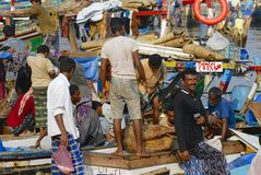 Fishermen unload  catch of the day, Al Hudaydah, Yemen. Royalty Free Stock Photo